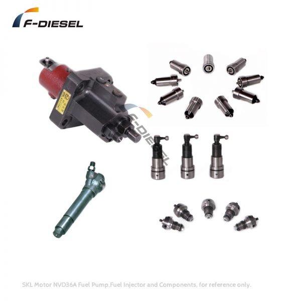SKL Motor NVD36A Fuel Pump Fuel Injector and Components