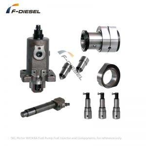 SKL Motor NVD48A Fuel Pump Fuel Injector and Components